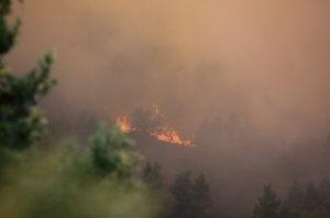 Συναγερμός σε όλη τη χώρα! Η πιο επικίνδυνη μέρα για πυρκαγιά