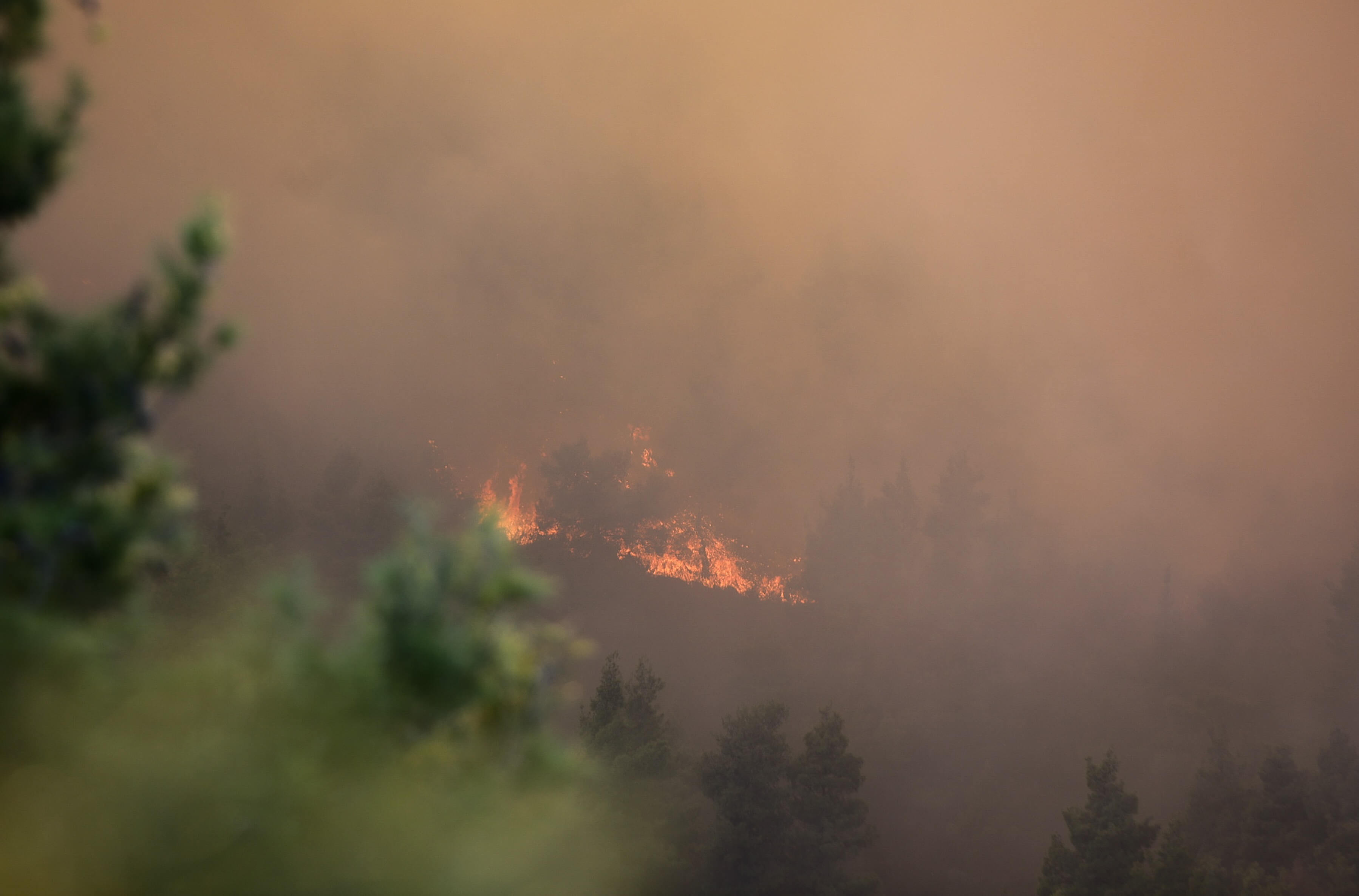 Συναγερμός σε όλη τη χώρα για τον ακραίο κίνδυνο πυρκαγιάς! Ποιες περιοχές βρίσκονται στο «κόκκινο» - Σήμερα η δυσκολότερη μέρα