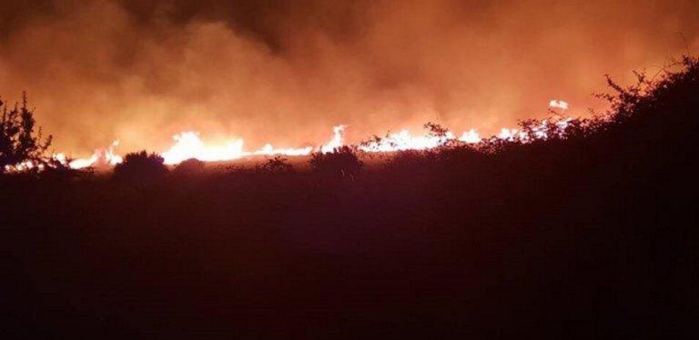 Φωτιά τώρα: Πύρινο μέτωπο στην Αίγινα – Επίγεια και εναέρια μέσα!