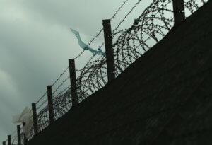 Φρίκη στη Βραζιλία: Σφαγές και αποκεφαλισμοί σε φυλακή! Στους 52 οι νεκροί