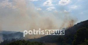 Ηλεία: Στάχτη έγιναν 15 στρέμματα δασικής έκτασης στο Μαζαράκι Πηνείας