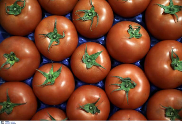 Επίσημο! Βρέθηκε το γονίδιο που κάνει… νόστιμη τη ντομάτα!