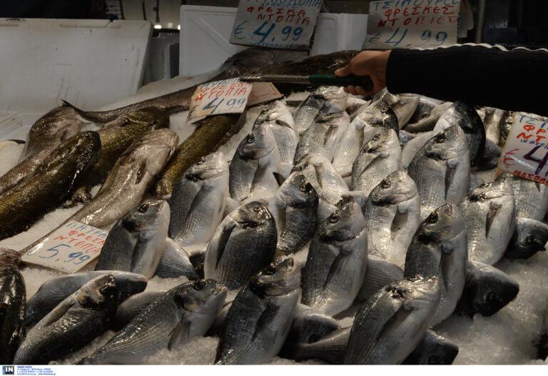 Πειραιάς: Κατασχέθηκαν ακατάλληλα ψάρια σε λαϊκή αγορά