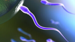 Το… κατεψυγμένο σπέρμα διατηρείται στο διάστημα!