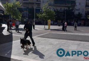 Καλαμάτα: Κακόγουστη φάρσα το τηλεφώνημα για βόμβα σε τράπεζα – Έλεγχος από σκύλο της αστυνομίας!