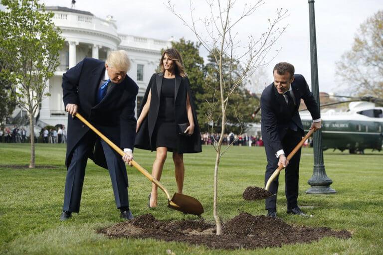 «Πέθανε» το δέντρο που φύτεψαν Τραμπ – Μακρόν στον Λευκό Οίκο