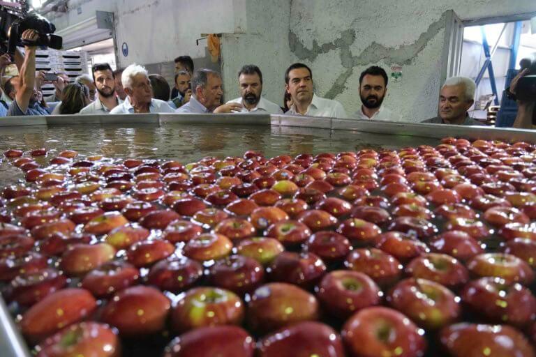 Ο Τσίπρας και τα… μήλα – Επίσκεψη στο συνεταιρισμό του Πηλίου