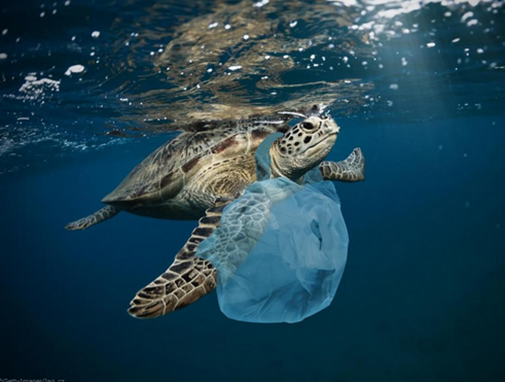 230.000 τόνοι πλαστικά πέφτουν κάθε χρόνο στην Μεσόγειο! Ποιες χώρες ρυπαίνουν πιο πολύ