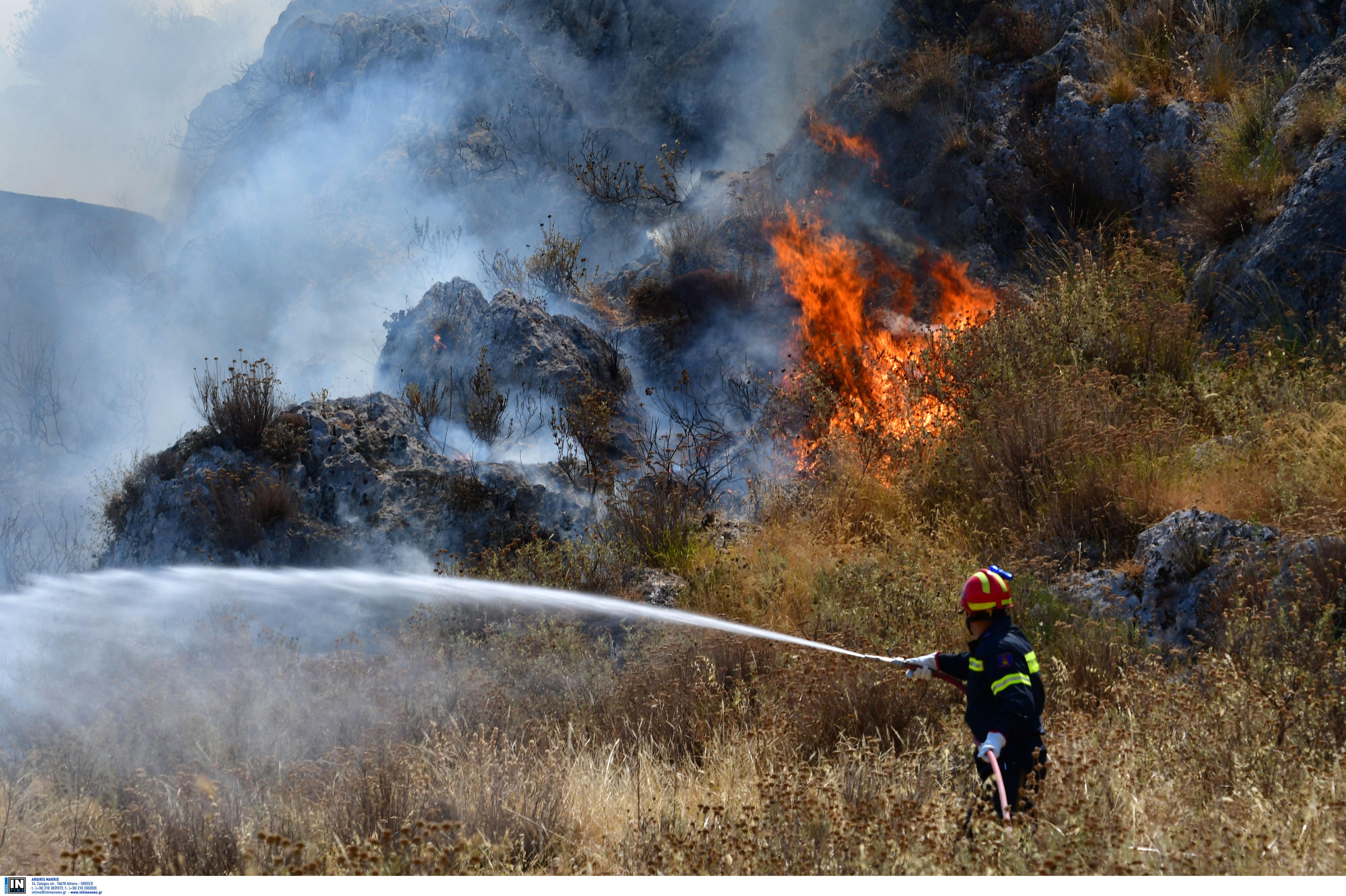 Ανδρος: Έβαλε φωτιά για να βγει χορτάρι – Συνελήφθη ένας βοσκός