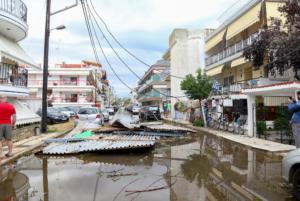 Χαλκιδική: Ο απολογισμός της καταστροφής από την Πυροσβεστική – 1.182 κλήσεις για βοήθεια