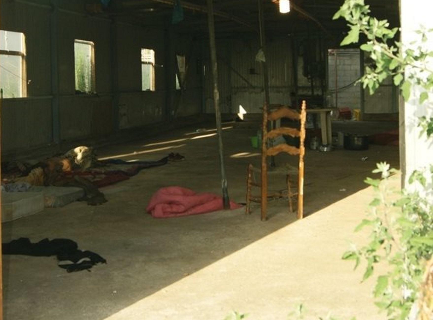 Άρτα: Βασανιστήρια σε αυτό το πτηνοτροφείο – Κόλαση με ξύλο και απειλές σε νύχτες ατελείωτες [pics]