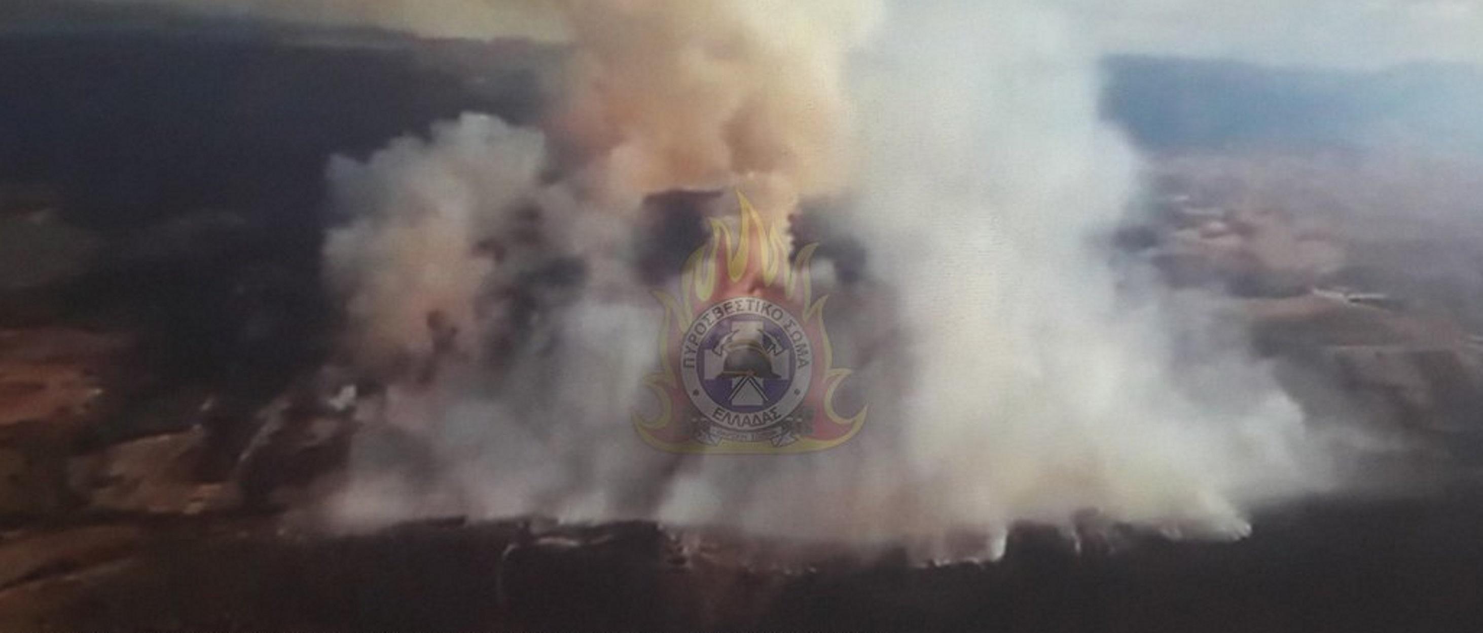 Μαίνεται η μεγάλη φωτιά στην Τανάγρα – Γιγάντια επιχείρηση της Πυροσβεστικής!