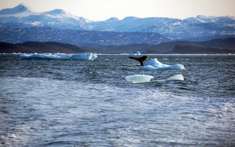 Αλάσκα: Λιώνουν οι πάγοι! Διώχνουν άρον – άρον τους κατοίκους
