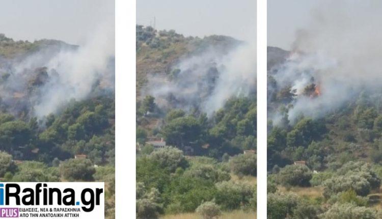 Φωτιά τώρα στο Πικέρμι