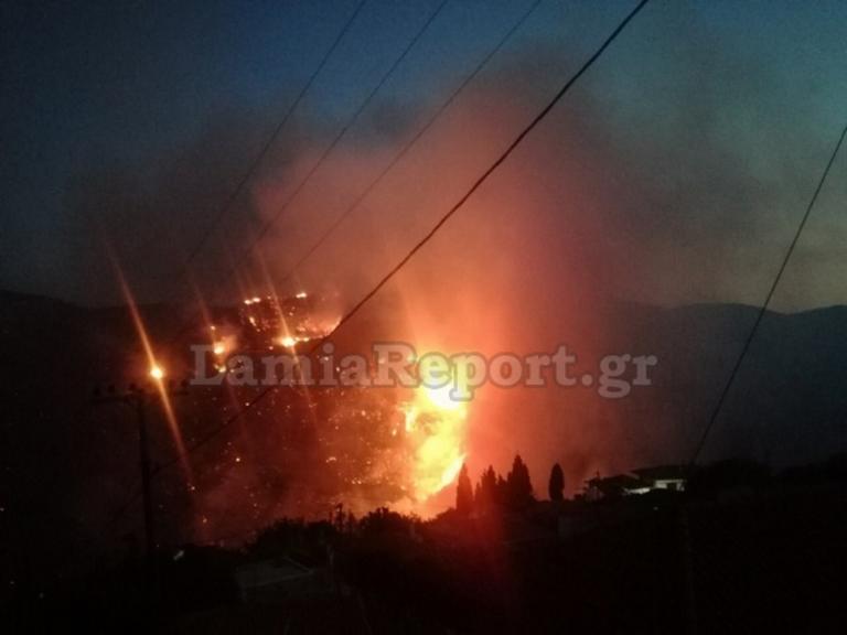 Φωτιά Εύβοια: Ολονύχτια μάχη με τις φλόγες δίνει η Πυροσβεστική!