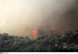 Γενική Γραμματεία Πολιτικής Προστασίας: Υψηλός κίνδυνος πυρκαγιάς για αύριο Δευτέρα