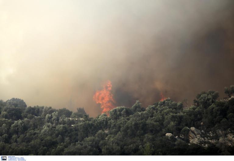 Καλύτερη η εικόνα της φωτιάς στην Εύβοια – Συνεχίζεται η μάχη με τις φλόγες