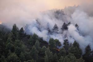 Κρήτη: Φωτιά στη Σύλλαμο Ηρακλείου