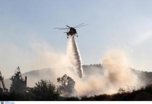 Υπό μερικό έλεγχο η φωτιά στο Σουφλί – Προκλήθηκε από κεραυνό