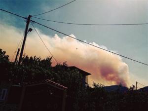 Εύβοια – Φωτιά: Μάχη με φλόγες και ανέμους – Ασφυκτική ατμόσφαιρα, σε απόγνωση οι κάτοικοι