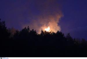 """Φωτιά στην Τανάγρα: Ήρωες πυροσβέστες προσπαθούν να νικήσουν το """"θεριό""""!"""