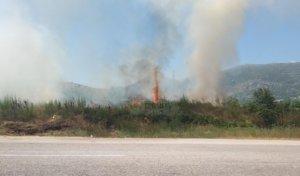 Δύο φωτιές στα Ιωάννινα! – video