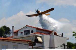 Φωτιά Ναύπλιο: Υπό μερικό έλεγχο η πυρκαγιά στα Κουτσούρια [pics]