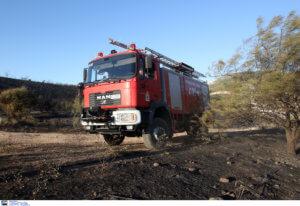 Μεγάλη φωτιά στην Ηλεία από κεραυνό