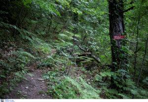 Ζάκυνθος: Προσεύχονται για ένα θαύμα 18 μέρες μετά την εξαφάνισή του – Νέες έρευνες για τον αγνοούμενο!