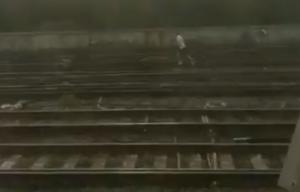 Αγγλία: Κυνηγούσε το σκύλο του στις γραμμές του τραίνου εν μέσω καύσωνα! video
