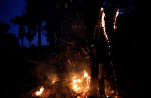 G7 - Πυρκαγιές Αμαζόνιος