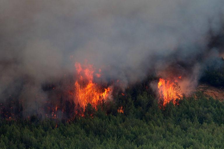 Καιρός: Συναγερμός στην Πολιτική Προστασία: Στο «κόκκινο» ο κίνδυνος για φωτιές!