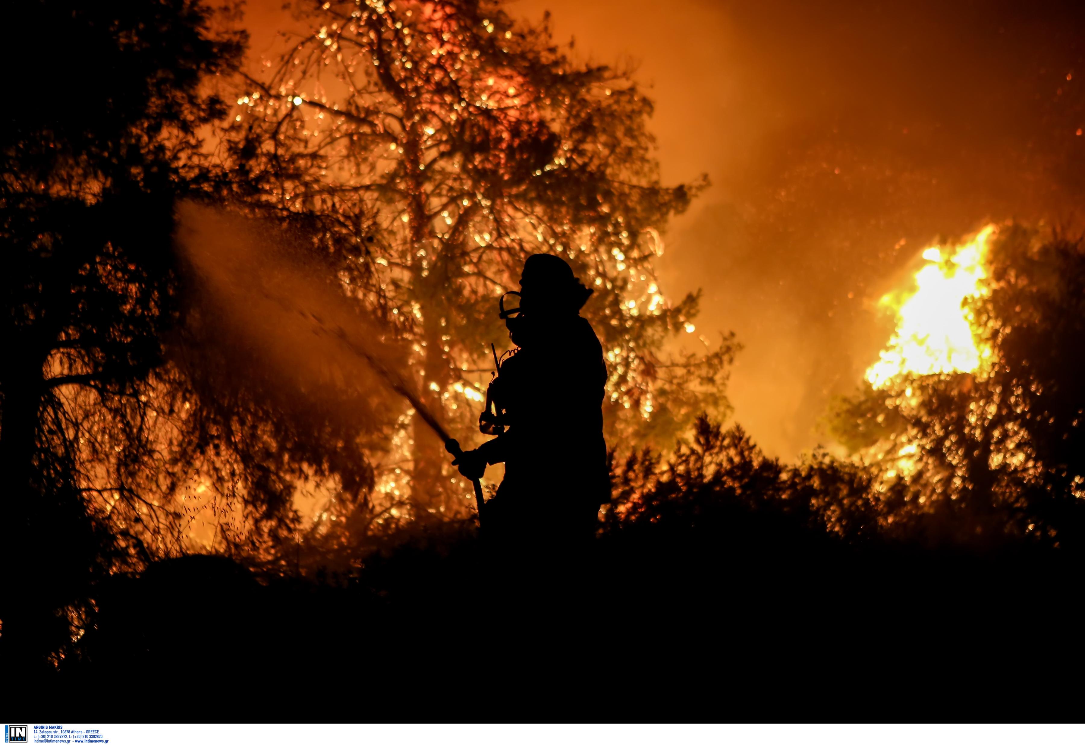 Φωτιά στον Μαραθώνα – Ισχυρές δυνάμεις της Πυροσβεστικής στην περιοχή