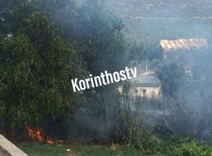 Αρχαία Νεμέα: Κοντά σε σπίτια η φωτιά – video