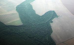 «Πόρτα» Γερμανίας σε Μπολσονάρο για τον Αμαζόνιο! «Κόβει» τη χρηματοδότηση