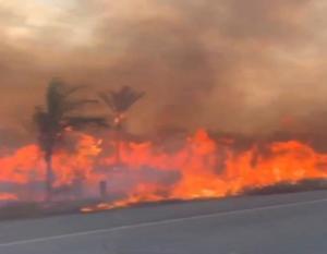Μαζέψτε τον! Ο Μπολσονάρου κατηγορεί τις ΜΚΟ ότι… έβαλαν τις φωτιές!