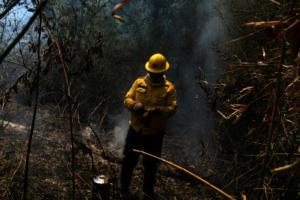 Βραζιλία: Ο πρόεδρος Μπολσονάρου απαγορεύει για 60 ημέρες τις καύσεις γεωργικών υπολειμμάτων