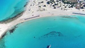 Η μαγευτική παραλία με τα χρυσοπράσινα νερά και τη ροζ άμμο