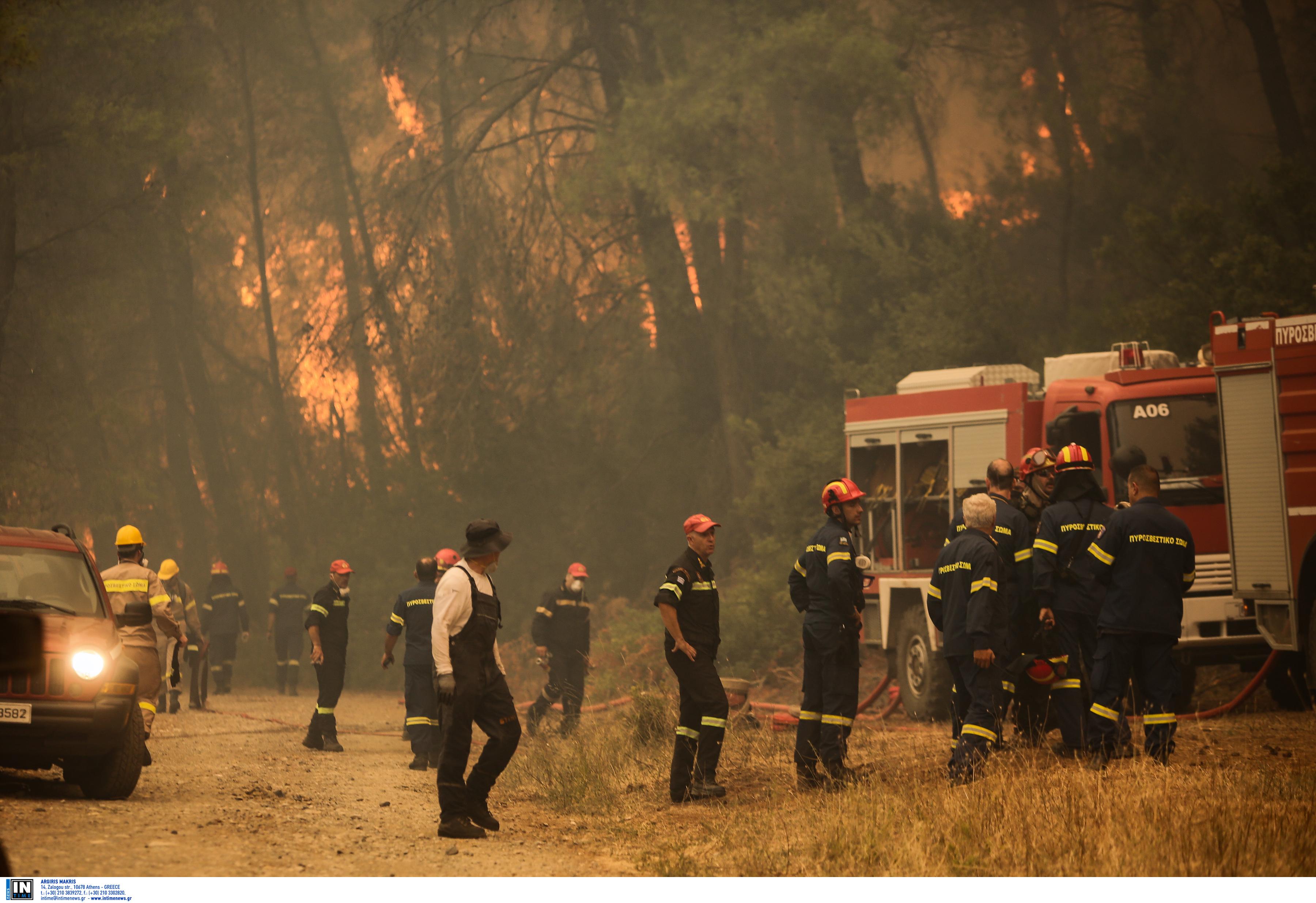 Φωτιά Εύβοια: Καίει ανεξέλεγκτη παρθένο πευκοδάσος – Οι καπνοί δυσχεραίνουν την κατάσβεση