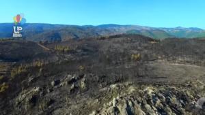 Απέραντο μαύρο στην Εύβοια! Αποκαρδιωτικές εικόνες από ψηλά μετά τη μεγάλη φωτιά
