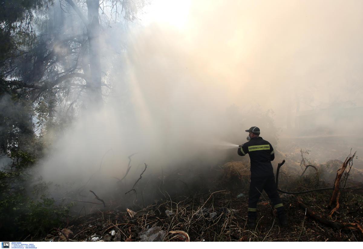 Εύβοια - Πυρκαγιά