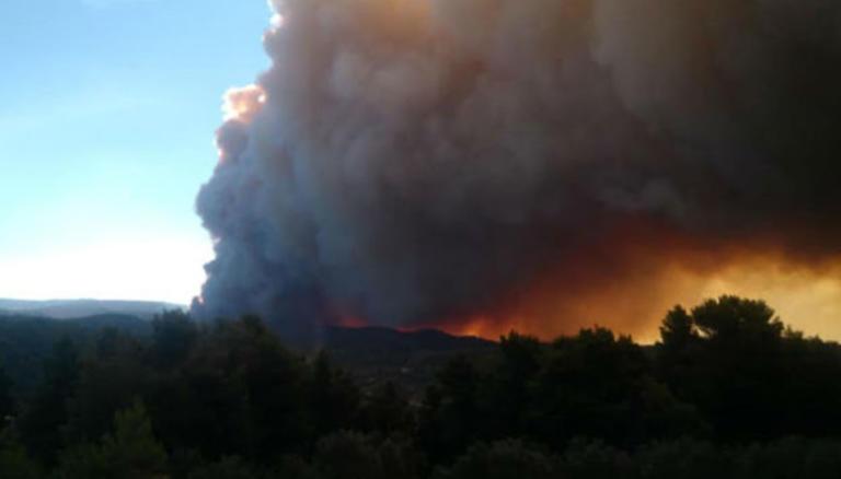 Φωτιά Εύβοια: Καίγεται δάσος Natura! Σε ετοιμότητα να φύγουν οι κάτοικοι