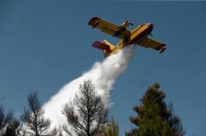 Φωτιά τώρα στην Αρκαδία – Μεγάλη επιχείρηση της Πυροσβεστικής