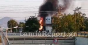 Θήβα: Κάηκε αποθήκη επιχείρησης στη Θήβα – video