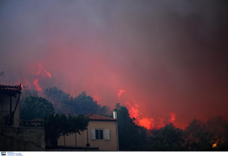 Εύβοια: Βόρειοι άνεμοι στα Ψαχνά δυσκολεύουν τις προσπάθειες πυρόσβεσης