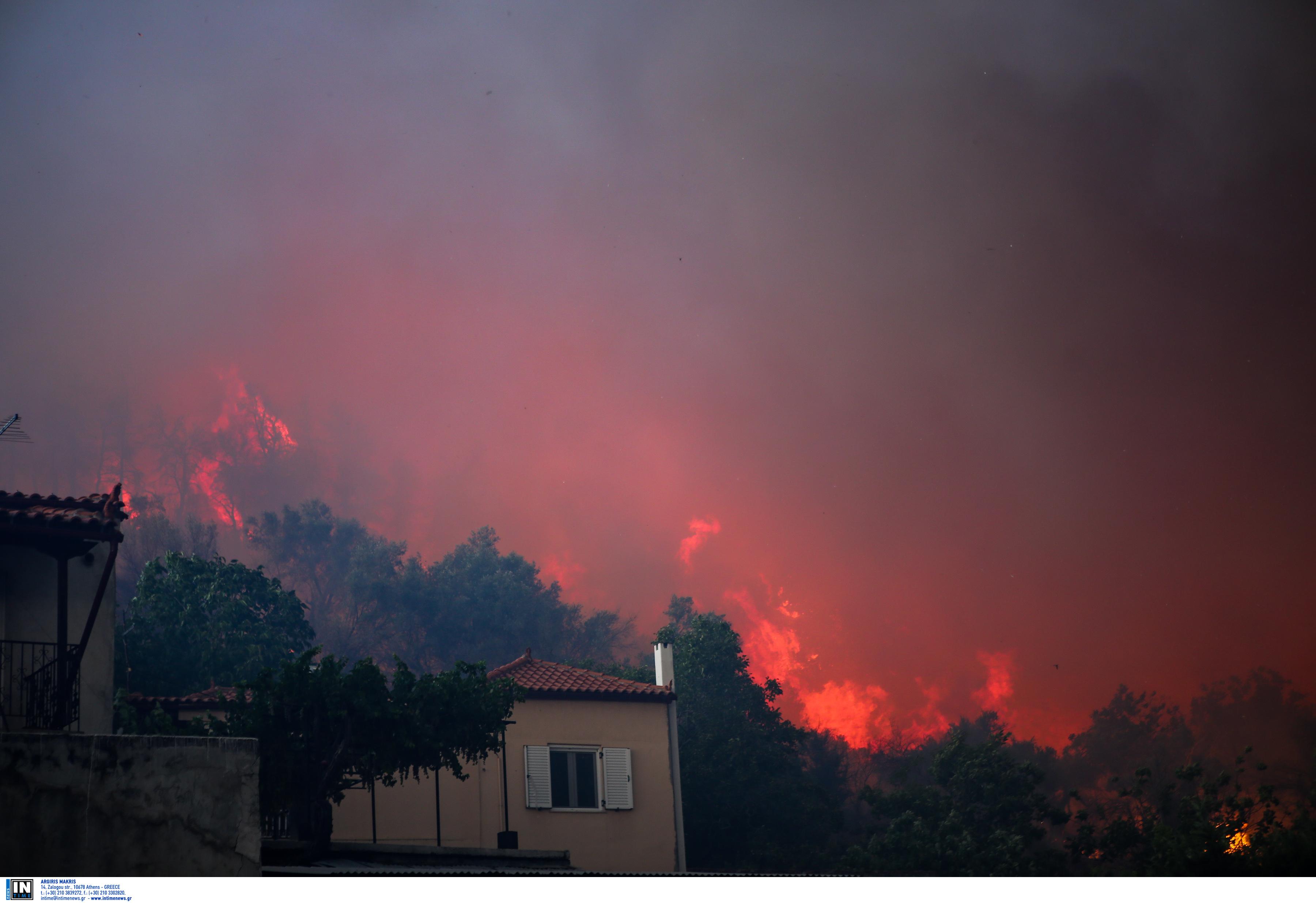 Βόρειοι άνεμοι στα Ψαχνά Ευβοίας δυσκολεύουν τις προσπάθειες κατάσβεσης της φωτιάς