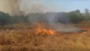 Φωτιά στη Λευκίμμη Κέρκυρας – video