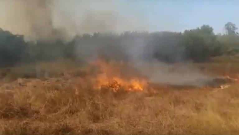 Φωτιά τώρα στη Λευκίμμη Κέρκυρας – video