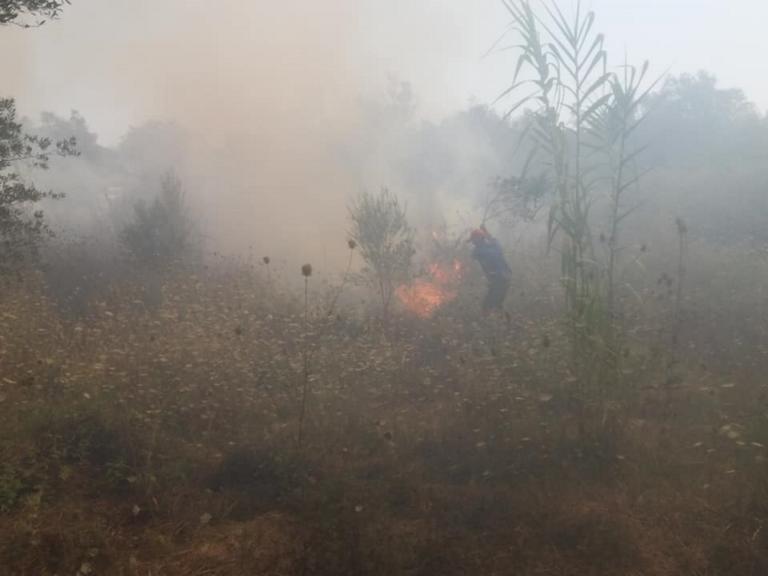 Κέρκυρα: Υπό έλεγχο η φωτιά στα Κρητικά  Λευκίμμης