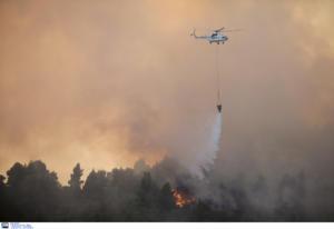 Μεγάλη φωτιά στη Νέα Μάκρη – Δυο τα μέτωπα, υπόνοιες για εμπρησμό